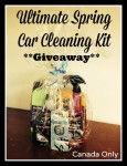 Spring Car Cleaning Kit