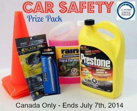 Car Safety Prize Pack