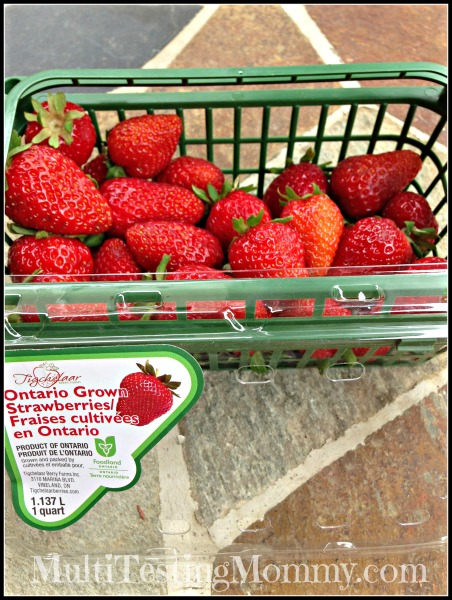 Ontario Strawberries