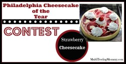 Philadelphia Cheesecake of the Year