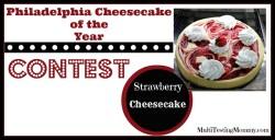 Philadelphia Cheesecake of the Year