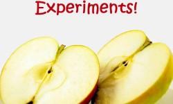 apple preschool science experiments