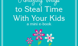 Stealing Time MINI Book