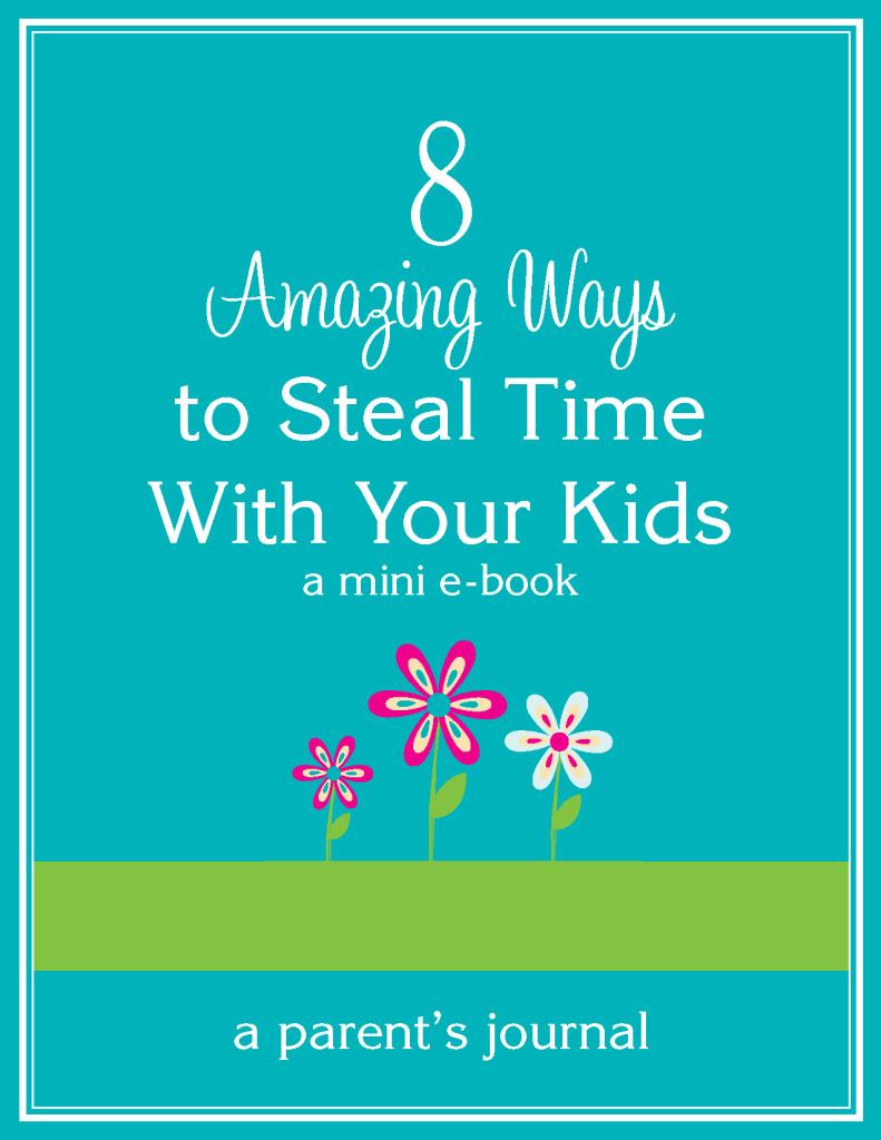 Stealing Time MINI Book