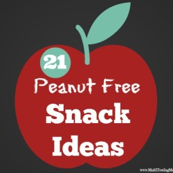 Peanut Free School Snacks