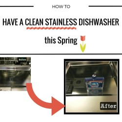 Clean Stainless Dishwasher