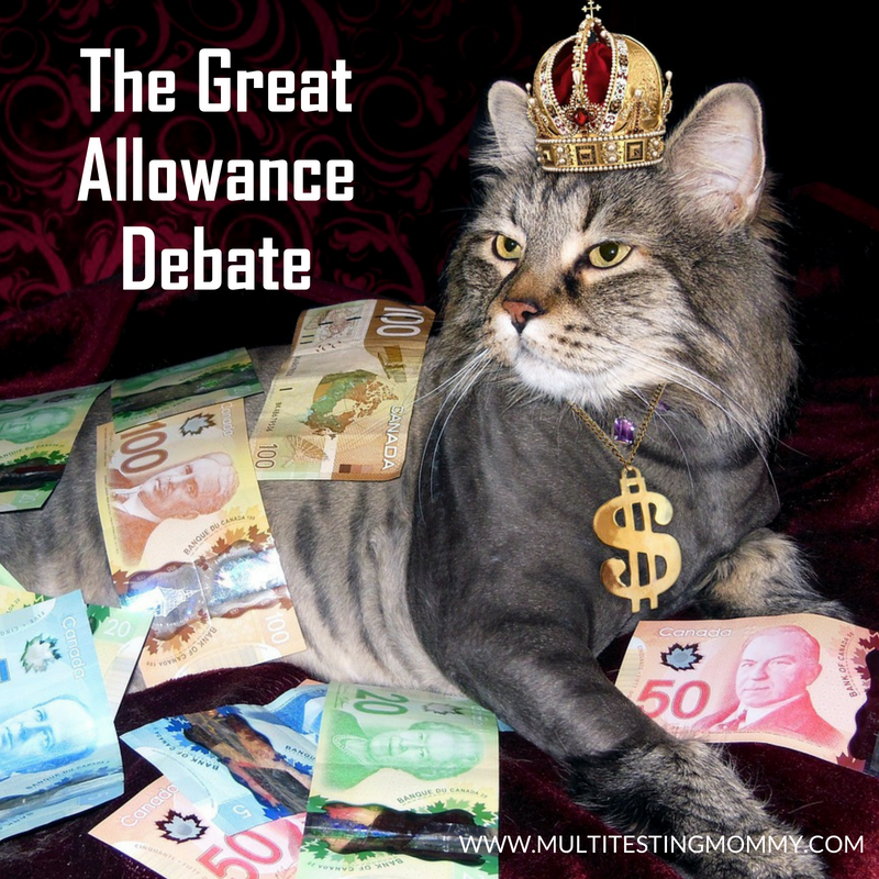 Great Allowance Debate