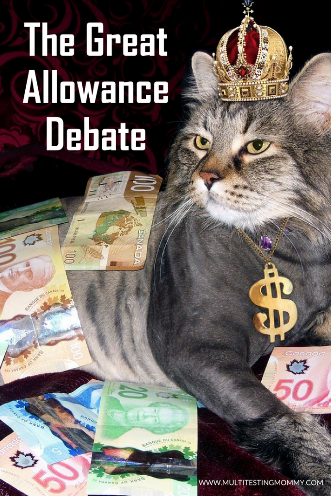 The Great Allowance Debate
